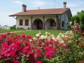 casa nonna con rose